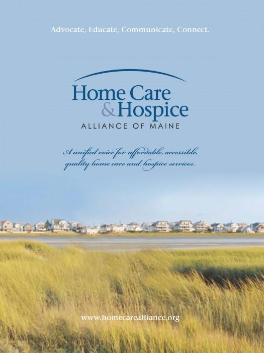 Home Care & Hospice Logo Development & Marketing Brochure