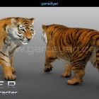 "View ""Modelado de personajes 3d Animal Tiger"""